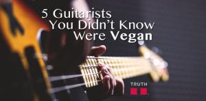 5 Guitaritst you didn't know were vegan