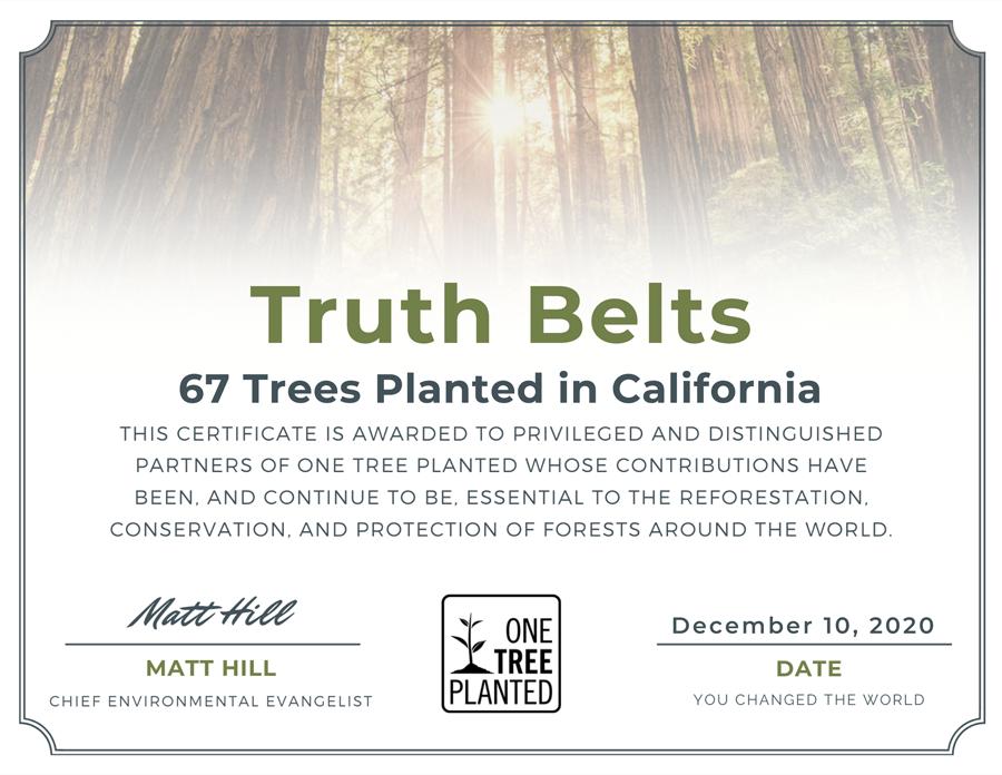 Trees Planted Nov 2020
