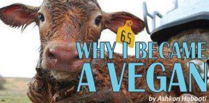 Why I Became a Vegan